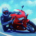 Sky Pilot - Honda Cbr600 by Brian  Commerford