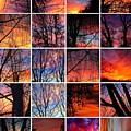 Sky Tunes by Chris Dunn