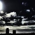 Skyline by Jenny Revitz Soper