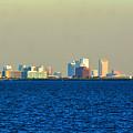 Skyline Of Tampa Bay Florida by Lisa Wooten