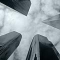 Skyscrapers by Steve Williams