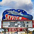 Skyview Drive-in Theater by Robert  FERD Frank