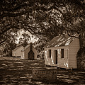 Slave Cabins On The Grounds Of Mcleod Plantation by Dale Powell