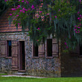 Slave Quarters by Ron Jones