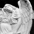 Sleeping Angel by Jean Haynes