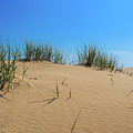 Sleeping Bear Sand Dunes by Dan Sproul