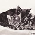 Sleeping Kittens by Layla Alexander
