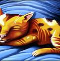 Sleeping Kitty by Valerie White