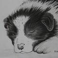 Sleeping Puppy by Ellen Moss