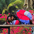 Sleeping Rasta-st Lucia by Chester Williams