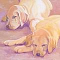 Sleepy Babies by Sheila Wedegis
