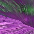 Slippery Slope by Tim Allen