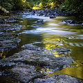 Sliver Creek by Robert Brownell