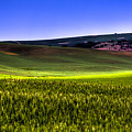 Sliver Of Sunlight On The Palouse Hills by David Patterson