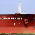 Sloman Hermes Detail 051718 by Mary Bedy