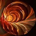 Slot Canyon Spiral by Doug Morgan