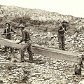 Sluice Box Placer Gold Mining C. 1889 by Daniel Hagerman