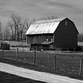Small And Big Barns Monochrome by Tina M Wenger