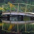 Small Bridge In Double Flowered by Angel Vallee