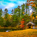 Small Covered Bridge by Claudia M Photography