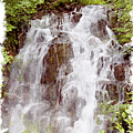 Small Falls On Mt. Ranier by Peter J Sucy