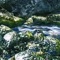 Small Freshwater Spring Under Rocks by Sandra Rugina