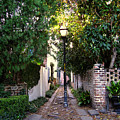Small Lane In Charleston by Susanne Van Hulst