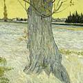 Small Pear Tree In Blossom Arles, April 1888 Vincent Van Gogh 1853  1890 by Artistic Panda