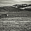 Small Ranch Colorado Foothills by Roger Passman