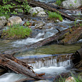 Small Rapids by George Sanquist