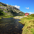 Small Red Cabin In Norway by Todor Nikolov