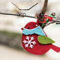 Small Red Handicraft Bird Hanging On A Wire by Stefan Rotter