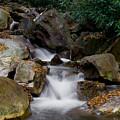 Small Stream by Bob Hahn