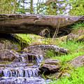 Small Waterfall 1 by Viktor Birkus