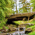 Small Waterfall 2 by Viktor Birkus