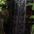 Small Waterfall by Zina Stromberg