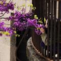 Smelling The Flowers by Obi Martinez
