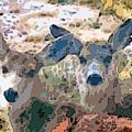 Smidgeon And Rudi 2 by Lenore Senior