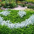 Smiley Face Garden Too by Laurie Eve Loftin