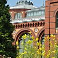 Smithsonian Bloom by Jost Houk