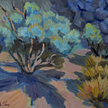Smoke Tree In La Quinta Cove by Diane McClary