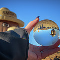 Smokey Bear Balloon In The Crystal Ball by Marnie Patchett