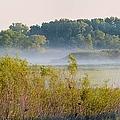 Smokey Marshland by Bonfire Photography