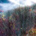 Smokey Mountain Ridge by Karen Wiles