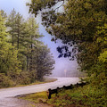 Smokey Mountain Road by Shirley Dawson