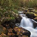 Smokies Stream In Autumn by Andrew Soundarajan
