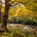 Smoky Autumn by Debra and Dave Vanderlaan