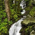 Smoky Mountain Cascade - D002388 by Daniel Dempster