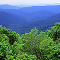 Smoky Mountain National Park by Panoramic Images