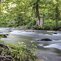 Smoky Mountain River In Summer  by John McGraw